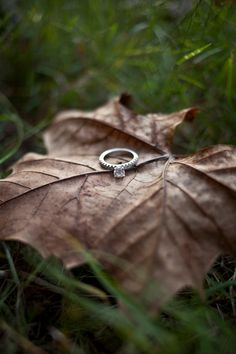 #ring shot. #leaves #fall engagement