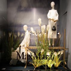 """LA RINASCENTE, Piazza della Repubblica, Florence, Italy, """"Listen Lucy... Most people stand on the dock of life waiting for their ship to come in when deep down inside they know it has never left port"""", for MaxMara, photo by Labzerocinque, pinned by Ton van der Veer Store Window Displays, Summer Window Displays, Ikea Hack Gold, Summer Store, Plant Table, Visual Display, Window Design, Plant Decor, Visual Merchandising"""