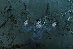 Znalezione obrazy dla zapytania body falling underwater