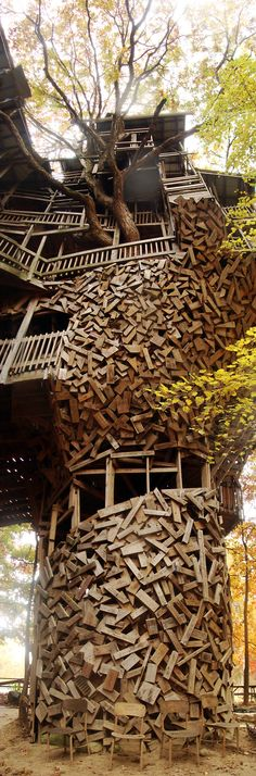 "hippist: ""frolicingintheforest: "" The craziest, most wonderful thing happened… Cool Tree Houses, Big Houses, Little Houses, Play Houses, Architecture Design, Amazing Architecture, Unusual Buildings, Interesting Buildings, Cheap Motels"