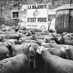 Gli scatti di René Maltête sono foto divertenti e poetiche che fanno sorridere e riflettere, umorismo involontario nella vita di tutti i giorni.