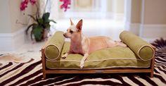 13 designade och stilrena möbler till ditt husdjur - Sköna hem