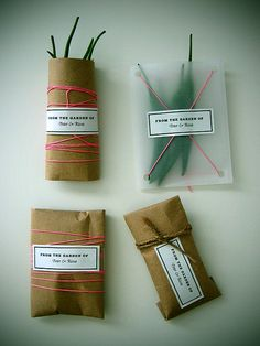 Simple packaging for garden give-aways.  More info: thenewdomestic.com/2010/01/chilies-from-the-garden/