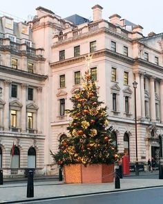 Christmas tree in Waterloo Place, St James's, London