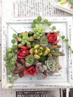 I love this...I'm not clear on how they did it ( frame attached to planter somehow...I'm thinking) but it sure is pretty!