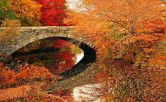 Autumn, stone bridge
