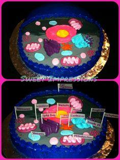 Animal Cell Cake Model