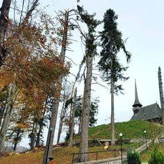 After the #storm. #Church #churchstagram #nature #tree #Transilvania #Transylvania #Romania