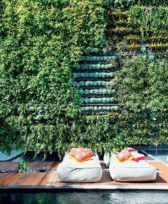 Peperômias, bromélias fireball, columeias e cipós-uva são algumas espécies do jardim vertical, criado pela empresa Jardim Imaginário, com irrigação automatizada, na parede de fundo do terreno