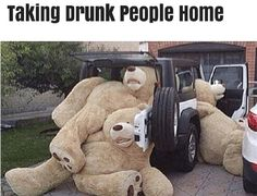 Giant runs teddy bears falling out of car, taking drunk people home ~ 35 Funny Pics & Memes