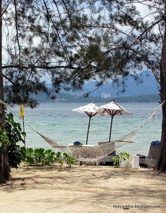 Gorgeous Borneo. Malaysia Resorts, Island Resort, Borneo, Lush, Environment, Patio, Luxury, Outdoor Decor, Nature