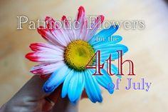 Fleurs patriotiques pour le 4ème Décorations juillet 2