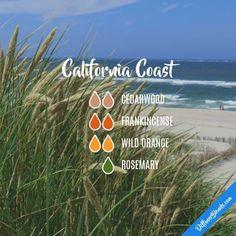 California Coast - Essential Oil Diffuser Blend