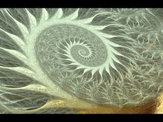 Mundos Internos, Mundos Externos: Segunda parte: La espiral
