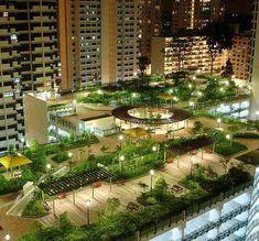 Toit jardin ~ Rooftop garden
