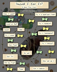 Should I Eat It? A Dog's Flow Chart to Decide What to Chew - Hikes with Dogs