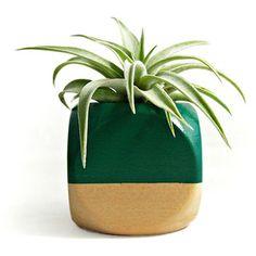 Mini Block Planter & Succulent