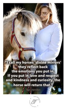 """""""I call my horses 'divine mirrors'—they reflect back the emotions you put in. If you put in love and respect and kindness and curiosity, the horse will return that."""" – Allan Hamilton Quote - Zitat - of the day - horse - iceland"""
