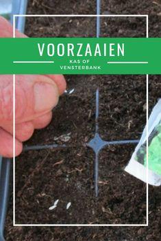 Als het buiten nog net te koud is om bloem- of tuinzaden te zaaien, kun je daar binnen (in huis of in een verwarmde kas) al wel mee beginnen. Dat heeft een groot voordeel: zodra het groeiseizoen begint, heb je al kleine plantjes die meteen door kunnen groeien. Green Plants, Garden Planning, Vegetable Garden, How To Dry Basil, Herbs, Vegetables, Net, Crowns, Vegetables Garden