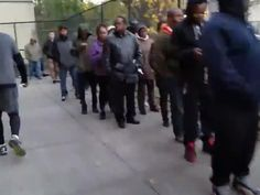 US election 2016: Timelapse footage shows ridiculously long line of voters outside Brooklyn polling station