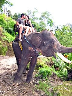 Elephant Ride Bali (Photo by Travelmoon/Kate)