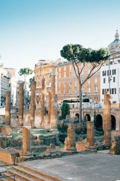 Rome / photo by Carlos Espinal