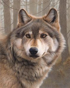 Andrew Hutchinson, wolf artwork More