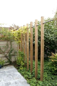 a garden wall or garden room divider than pergola, yet , Modern look, Simple construction with pipe and timber. This could prompt construction ideas Stoere pergola met steigerbuis Garden Trellis, Garden Fencing, Garden Plants, Back Gardens, Outdoor Gardens, Garden Dividers, Garden Privacy Screen, Garden Screening, Screening Ideas
