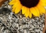 Sunflower Seeds / Top 10 Non Dairy Calcium Rich Food - http://www.buildhealthybody.com/top-10-non-dairy-calcium-rich-foods/