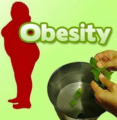 Treat the obesity in a natural way