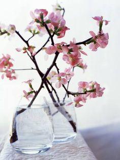 cherry blossom arrangement - google search | flowers | pinterest