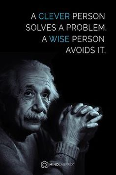 """A clever person solves a problem. A wise person avoids it."" - quote by Albert Einstein."