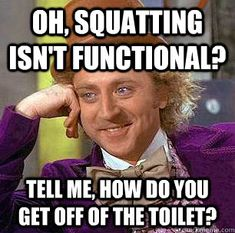 Oh, squatting isn't functional? Tell me, how do you get off of the toilet?