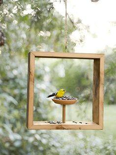 make a bird feeder / love this!!