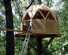 treehouse geodesic dome