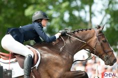 Horse Sports with GT Courbette http://horsesportswithgtcourbette.blogspot.com/