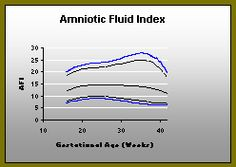 Amniotic Fluid Index (with optional interactive features available). The volume of amniotic fluid is a useful diagnostic tool used to help determine fetal health and development. From: Fetal Ultrasound Org.