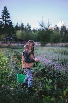 [Tumbleweed Farm, Parkdale, Oregon] via Secret Supper September by Eva Kosmas Flores   Adventures in Cooking