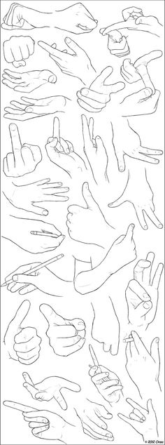 Wonderful examples of different positions of the human hands.