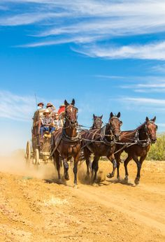 Outback Queensland is a fantastic region to take a road trip. You can even play cowboy on a stagecoach ride. Here is our itinerary tips!
