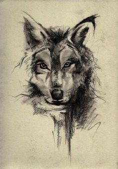 drawing *----*