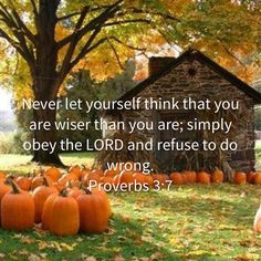 Proverbs Never let yourself think that you are wiser than you are; simply obey the LORD and refuse to do wrong. Biblical Quotes, Prayer Quotes, Bible Verses Quotes, Bible Scriptures, Spiritual Quotes, Faith Quotes, Wisdom Quotes, A Course In Miracles, Bible Encouragement