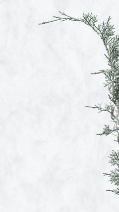 Paper Background Design, Gold Wallpaper Background, Simple Background Images, Simple Backgrounds, Background Pictures, Textured Background, January Background, Winter Background, Christmas Background