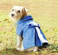 Doggy plisado patrón Abrigo de lana