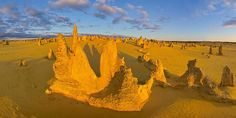 The Pinnaclesarelimestoneformations withinNambung National Park, near the town ofCervantes, Western Australia. Hidden away among the lonely dunes and windswept heathland of Western Australia's Turquoise Coast there is a barren, otherworldly desert of stone pillars rising up out of the golden sand.   #australiana #namburg national park #pinnacles #travel
