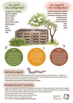 Land Art, Growing Plants, Indoor Plants, Homesteading, Flora, Environment, Organic, Nature, Gardens