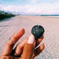 Hunting for seashells #mondaymotivation