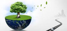 Green Press Comunicacion » SERVICIOS
