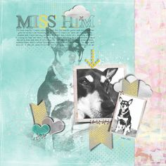 This is a page I created using The Nifty Pixel Page Draft Template for CSI Casefile #175 sketch challenge.  All about missing my fur baby  RIP Osky xox