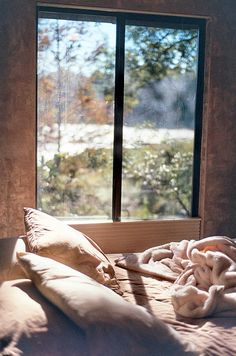 Waking up to sunlight through your bedroom window